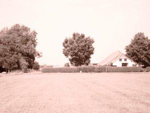 Seksboerderij in Drente