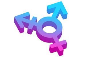 Travestieten en transgenders in de Nederlandse prostitutie